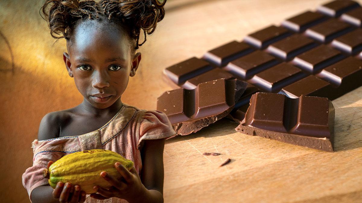 Grande parte do chocolate consumido no mundo é produzido com cacau obtido com trabalho infantil